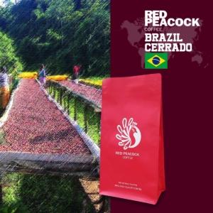 巴西 喜拉朵 單品咖啡豆 (半磅/包)