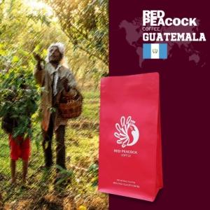 瓜地馬拉 薇薇特南果 單品咖啡豆 (半磅/包)