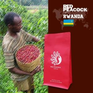 非洲精選 Rwanda Lake Kive 盧安達咖啡豆 (半磅/包)