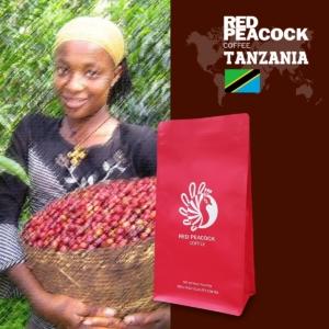 非洲精選 Tanzania 坦尚尼亞咖啡豆(半磅/包)