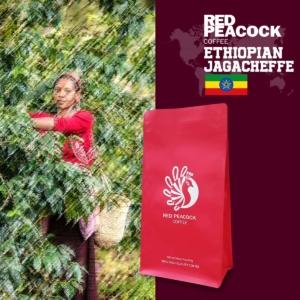 哥德榮耀 耶加雪菲 單品咖啡豆 (半磅/包)